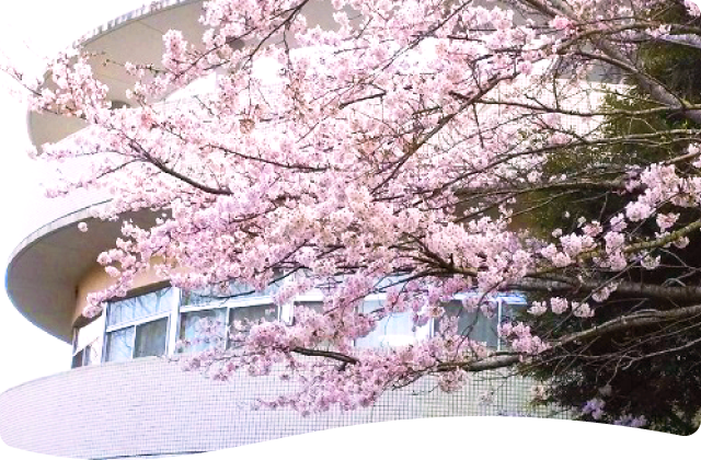 総和苑の木々