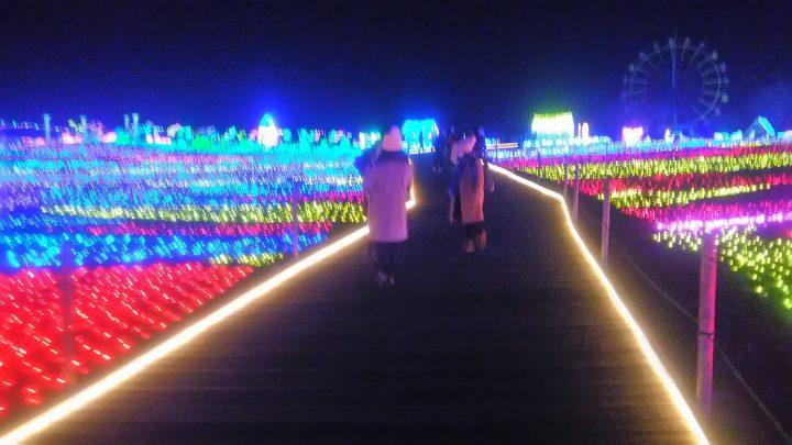 EPAベトナム人介護福祉士候補生、東京ドイツ村にイルミネーションを見に行ってきました! 🐷