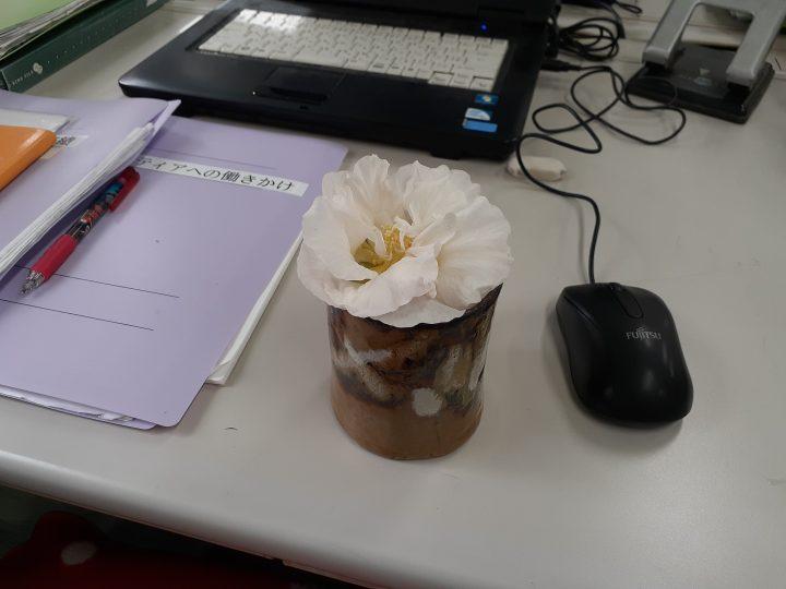「酔芙蓉(すいふよう)」の花が咲きました。